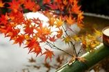 水琴窟の秋飾り ~圓光寺Ⅲ~