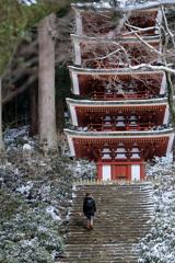 Climb steps ~室生寺五重塔へ~