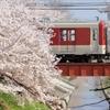 さくら電車 ~高田千本桜~