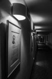カットー二のいる廊下