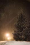 粉雪の夜 ④