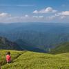 三津河落山から絶景を楽しむ娘