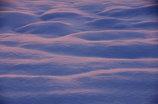 色付く雪面①