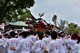 焼津神社 荒祭