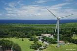 海を向いた風車