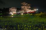飯給 春の夜