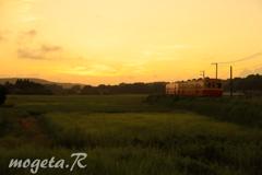 鶴舞の夕陽