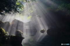 光芒のリフレクション