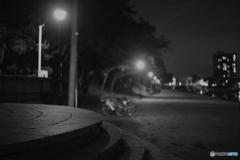 夜の天王川公園