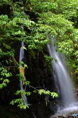夏葉とごろごろの滝