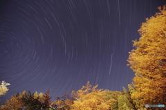 高山・清見の夜空