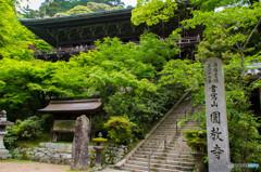 新緑の書写山円教寺