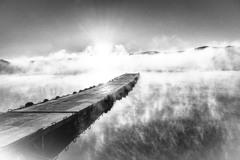 朝靄 山中湖