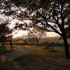 始まりの木場潟公園
