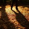 影と歩けば