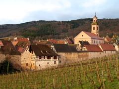 朝の村と葡萄畑