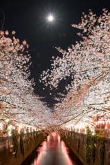 夜桜ハートとフル・ムーン