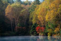 秋はすぐそこに