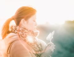 風と光の声