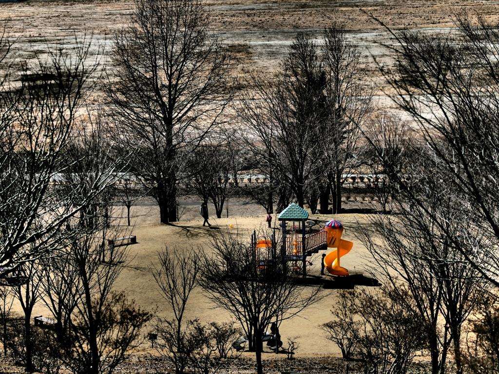 冬枯れの公園