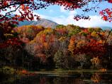 秋晴れの湖沼