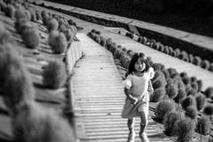コキア畑を走る少女1