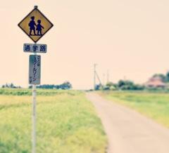 田舎の通学路