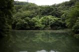 トンボの池。