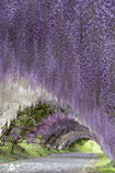綺麗なトンネル2。