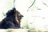 百獣の王。