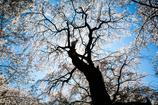 春空覆うシルエット