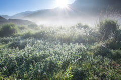 夏の朝の空気
