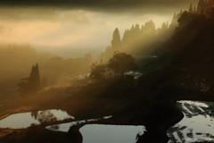 朝日降りそそぐ棚田