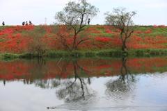 津屋川の情景