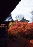 秋深まる古都