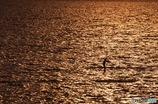 黄金を漕ぐ