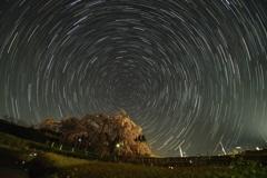 滝桜星軌跡