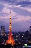 東京風景⑯ #東京タワー #世界貿易センタービル