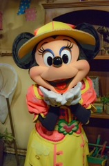 Happy Birthday Minnie!!