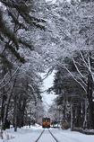 芦野 冬景