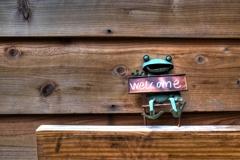 パチリ 途中下写(4月29日午前)三軒茶屋 06