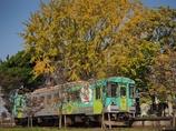 秋化粧の列車
