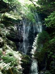 三峰山 不動滝