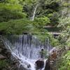 5月5日 布引の滝 10