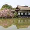 3月29日 京都 11