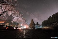 垂れ桜と天の川銀河