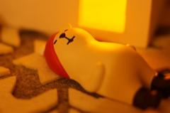 僕も今夜は  早めに寝ちゃお〜!!!