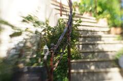 シンデレラの階段