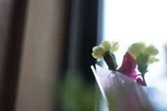 小さな花束に込められた願い