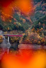 秋深まる眺め